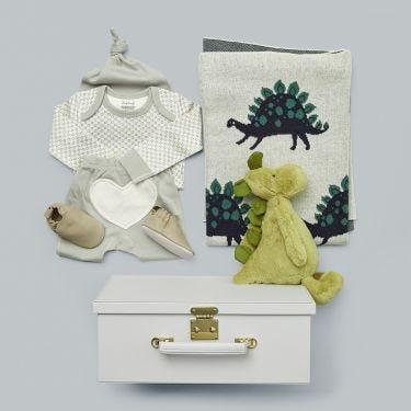 Dinosaur Baby Gift Hamper
